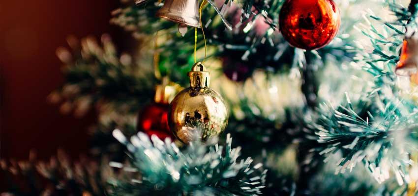نکاتی برای خرید درخت کاج کریسمس