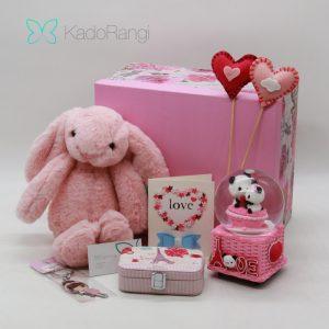 پک عروسک ولنتاین طرح خرگوش